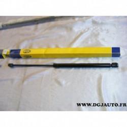 Verin hayon de coffre 450N GS0168 pour ford focus clipper phase 1 et 2