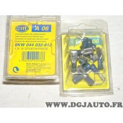 1 Boite de 12 cosses plates connecteur electrique branchement faisceau cable 1.5-2.5mm² universel A06 8KW044032-812 pour véhicul