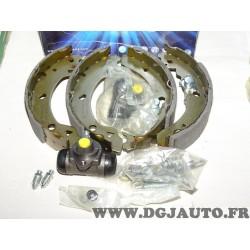 Kit frein arriere montage bendix 203x39mm diametre Requal RPK108 pour ford fiesta 2 3 II III
