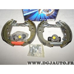 Kit frein arriere prémonté 228x42mm montage bendix Requal RSK160 pour citroen C3 peugeot 207 208